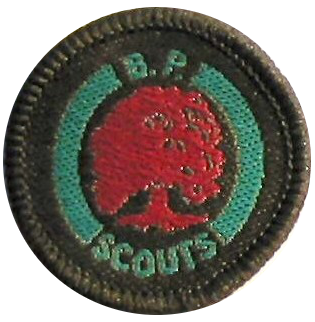 Scout Conservationist Badge