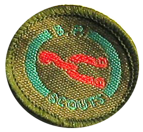 Scout Rider Badge
