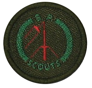The Scout Wirelessman Badge