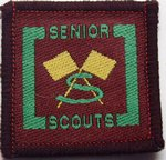 The Senior Scout Leading Signaller Badge