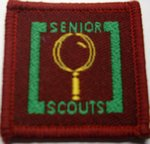 The Senior Scout Master Collector Badge