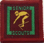 The Senior Scout Master Swimer Badge