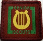 The Senior Scout Musician Badge