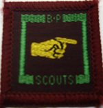 The Senior Scout Pathfinder Badge