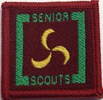 The Senior Scout Public Health Badge