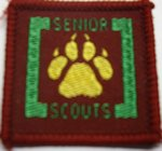 The Senior Scout Tracker Badge
